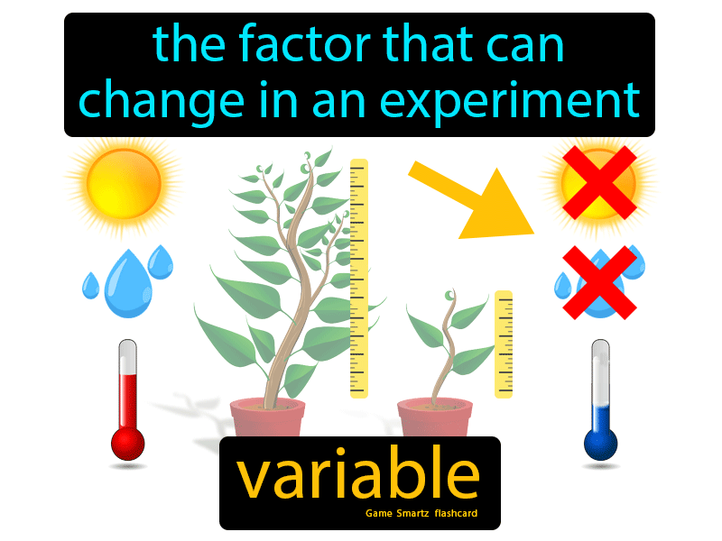 Variable with Definition: The factor that can change in an experiment.
