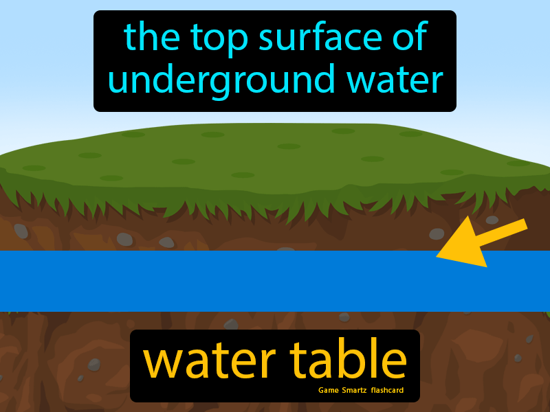 Water Table Definition: The top surface of underground water. Science.